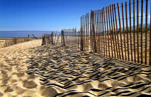 Miles of beaches....National Seashore of Cape Cod.